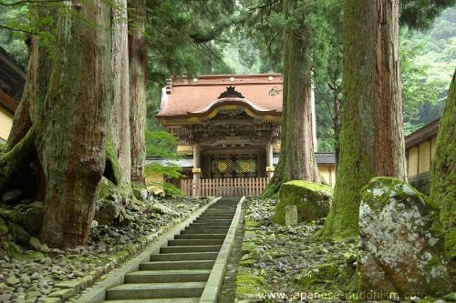 fukui buddhist personals Seeking to broaden the appeal of buddhism among japan's younger generation, a buddhist priest at shō-on-ji (照恩寺), a pure land temple in fukui city, central japan, has begun offering an.